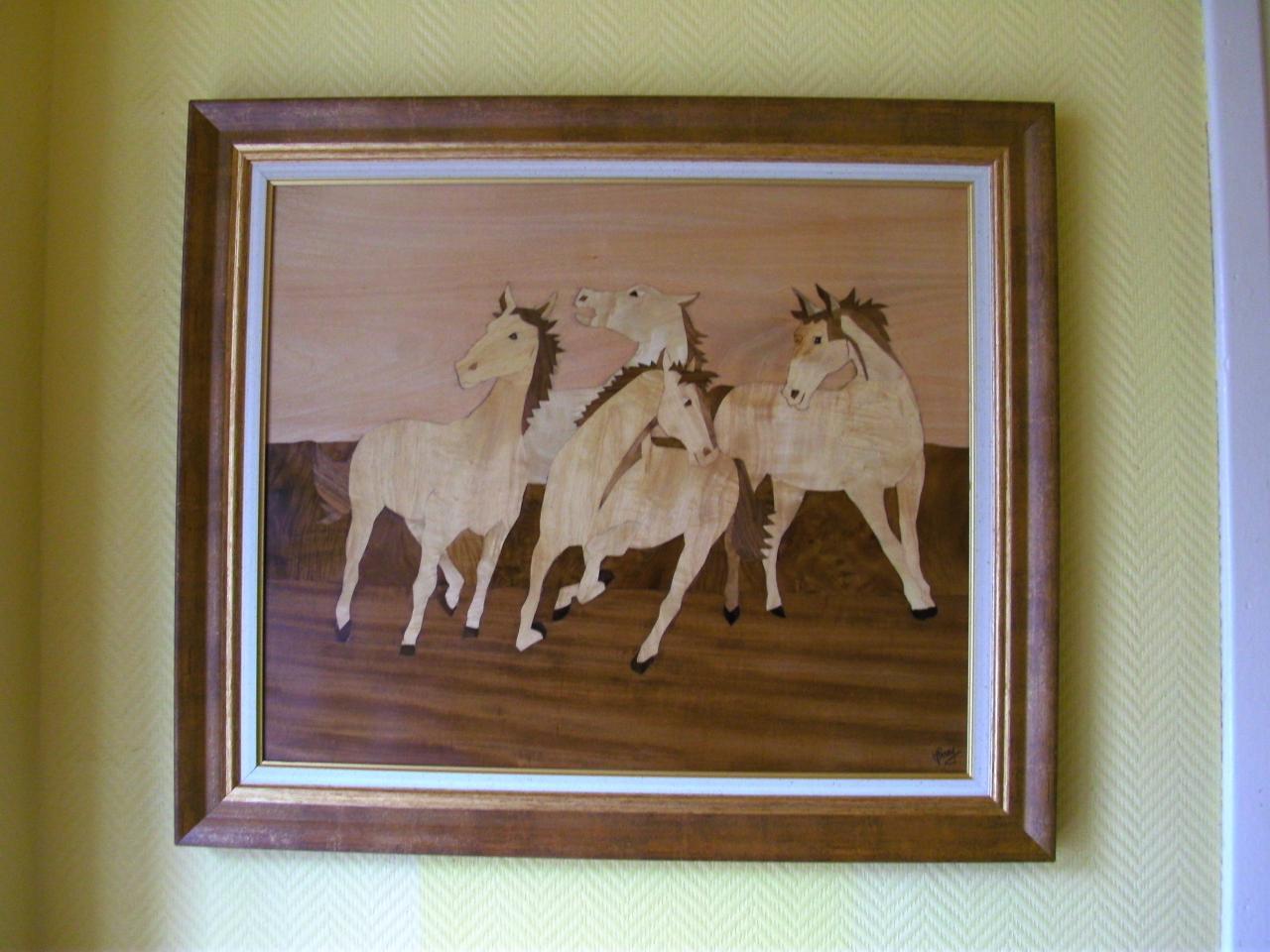 Les chevaux sauvages